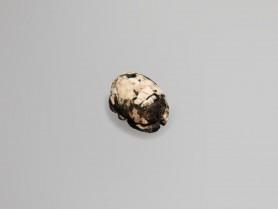 Egyptian Porphyry Scarab