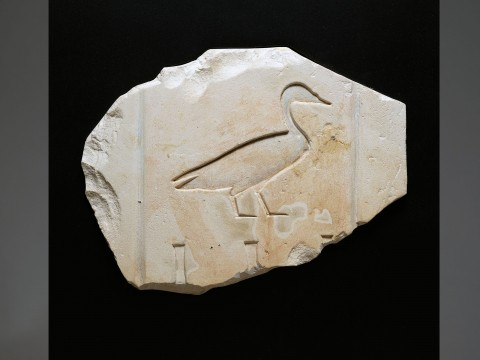 Egyptian Limestone Relief of a Duck